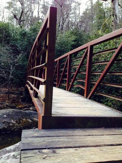 Chattooga River Trail