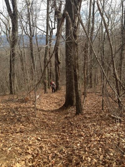 Ascent of Chestnut Knob