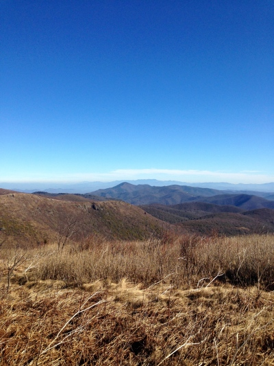 view from Black Balsam Knob