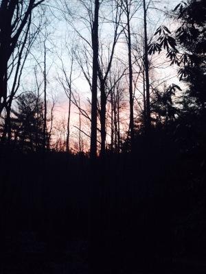 Foothills Trail sunrise