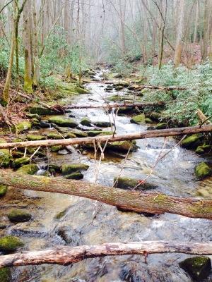 Foothills Trail - Rock Creek