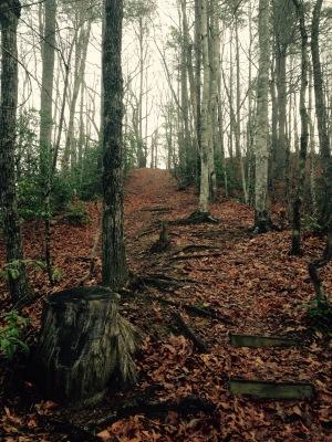 Foothills Trail - Heartbreak Ridge