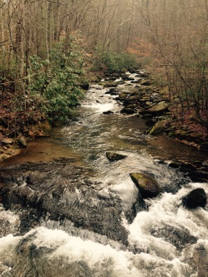 Foothills Trail - Toxaway Creek