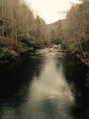 Foothills Trail - Horsepasture River