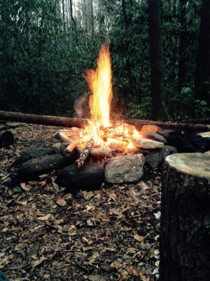 Foothills Trail - Bearcamp Creek