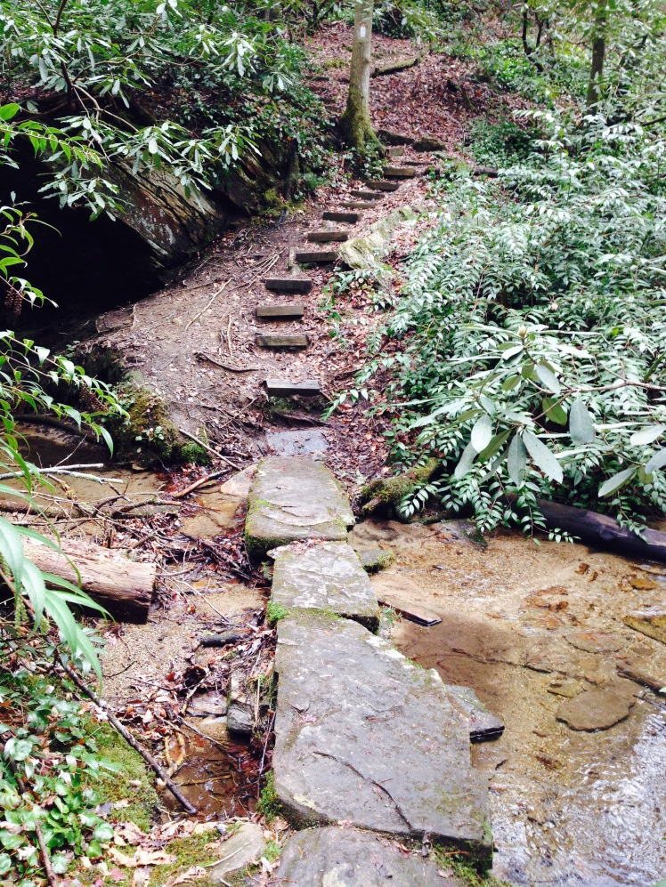Gorges State Park - Cobb Creek
