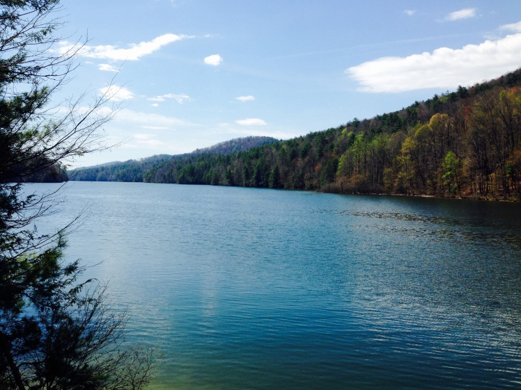 Gorges State Park - Lake Jocassee