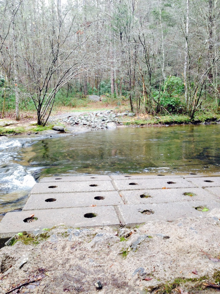 Gorges State Park - Toxaway River crossing