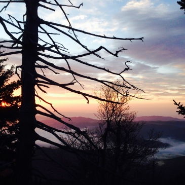 Black Mountain Crest Trail sunrise