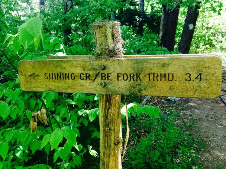 Shining Creek Trail Trailhead