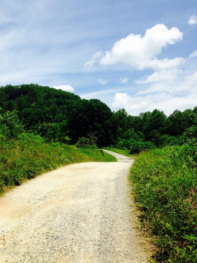 Mill Ridge