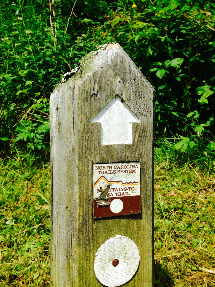 MST Trailhead at Walker Knob Overlook