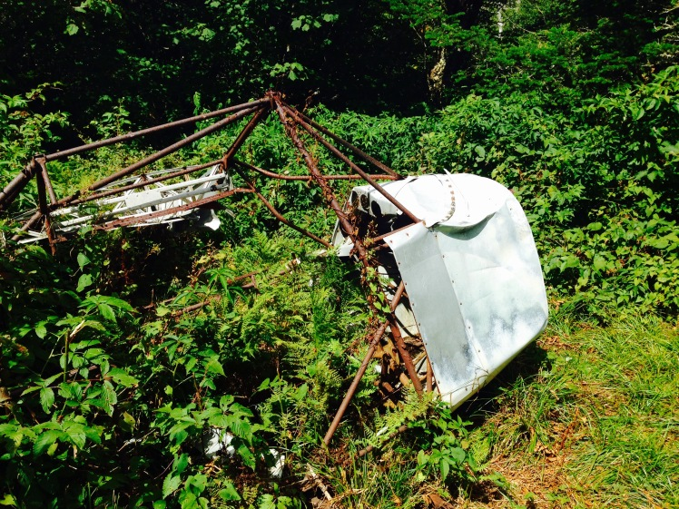1968 plane wreckage near Rainbow Gap