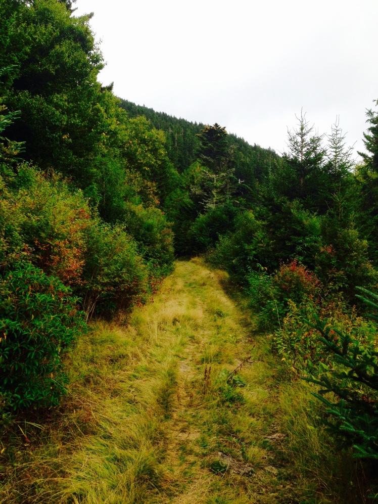 Buncombe Horse Range
