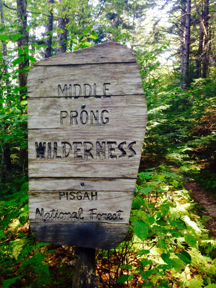 Middle Prong Wilderness