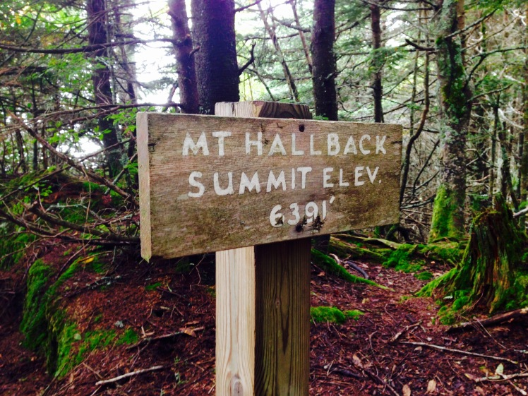 Mt. Hallback summit