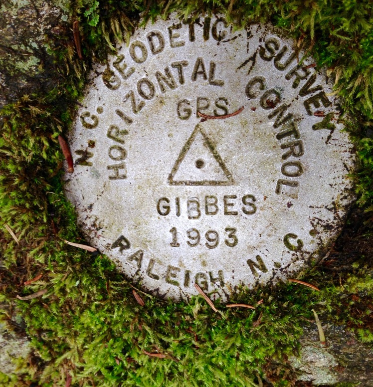 Mt. Gibbes summit