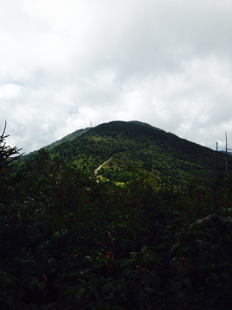 view of Mt. Gibbes