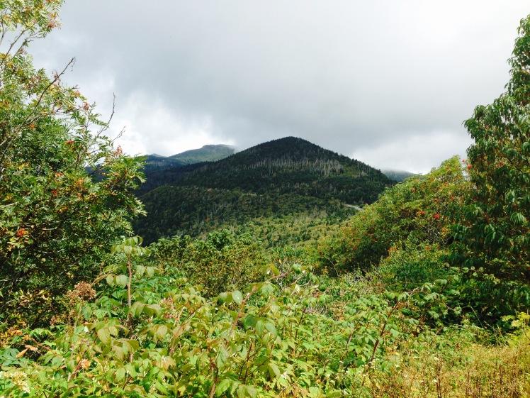 view of Mt. Hallback