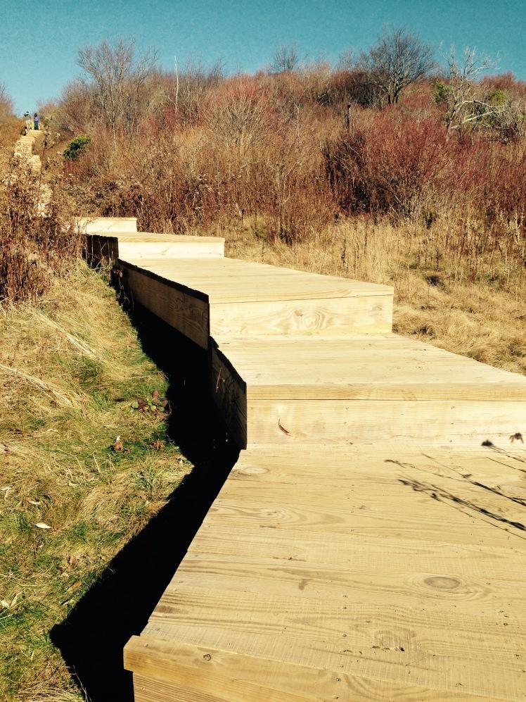 Sam Knob Trail