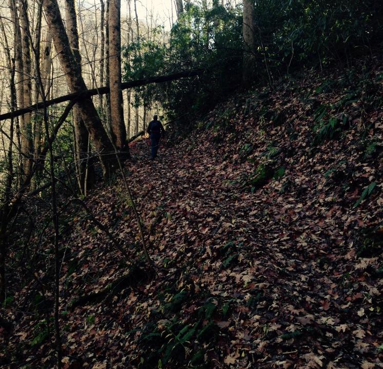 Kanati Fork Trail - Perry