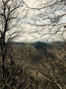 Hangover Lead Trail