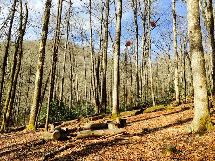 Campsite 46 - Estes Branch