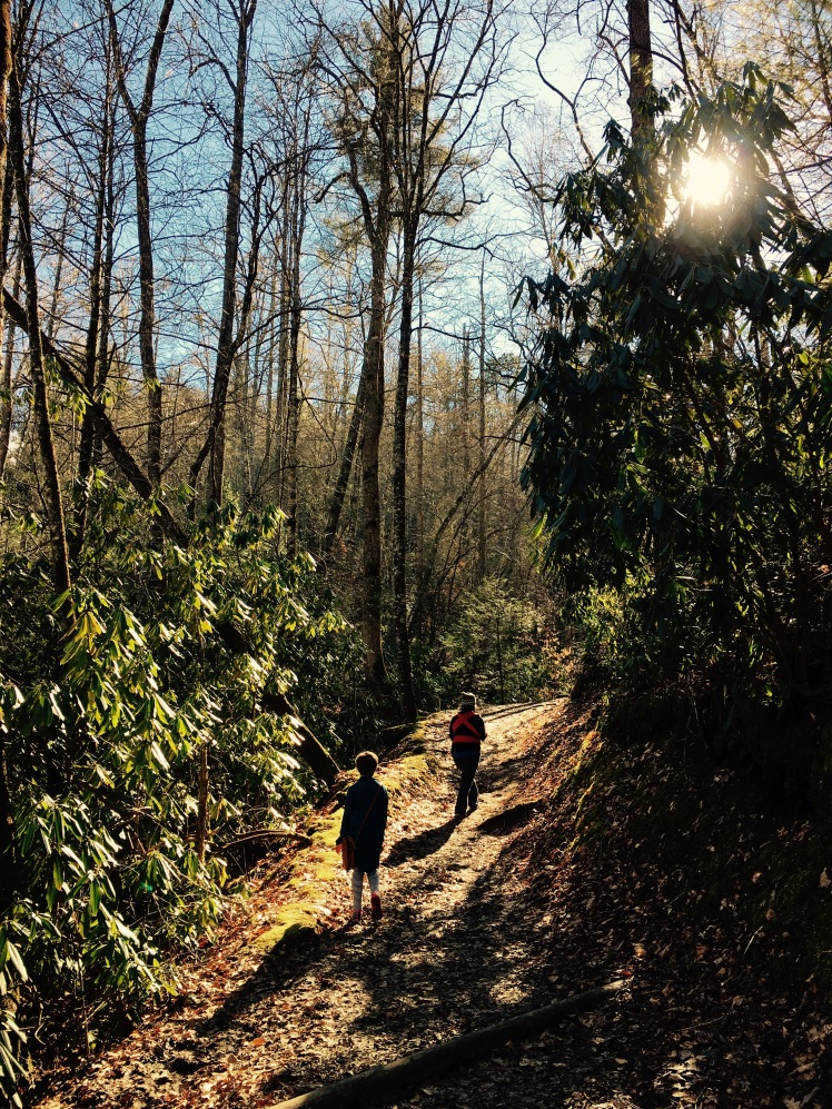 Deep Creek Horse Trail