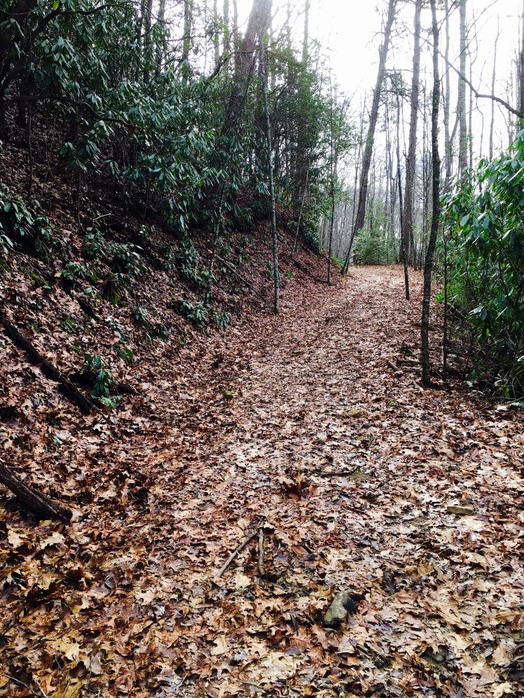 Indian Creek Motor Trail