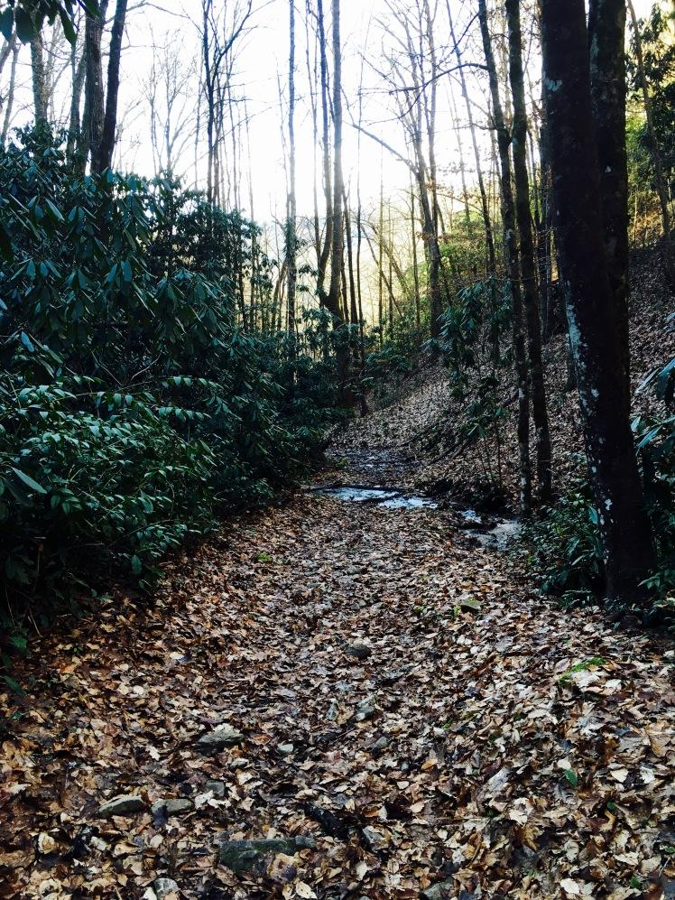 Stone Pile Gap Trail