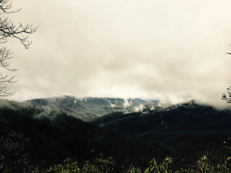 Bennett Gap Trail - ridge view