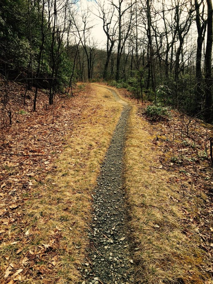 F.S. 5099 - trail