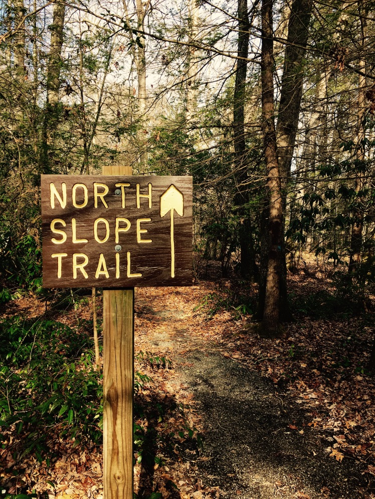 North Slope Trail - Trail Head