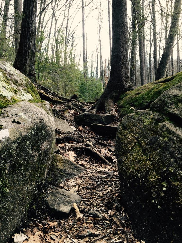 Slick Rock Falls Trail - Tolkien Trail