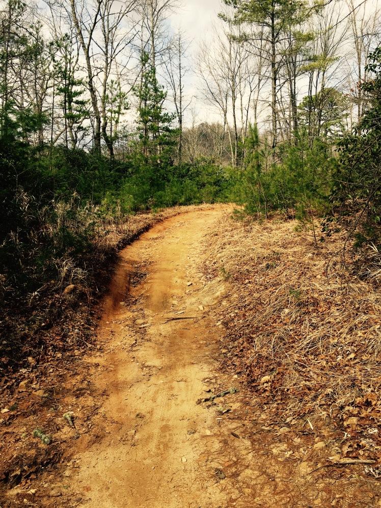 Thrift Cove Loop Trail - hike/bike trail