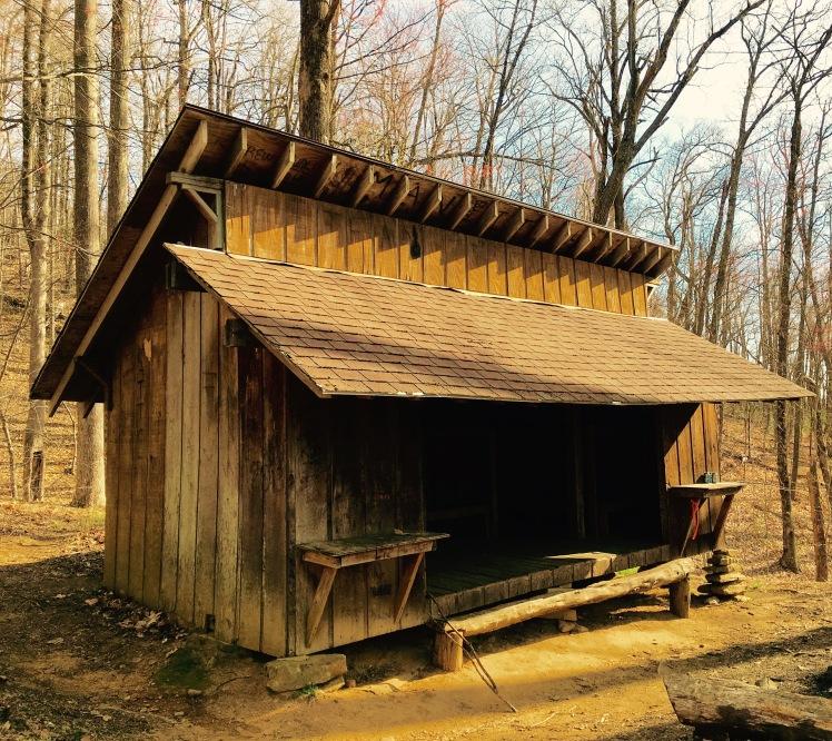 Black Mountain Trail - Buckhorn Gap Shelter