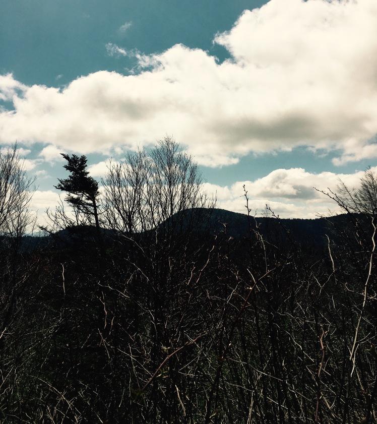 Little Sam Trail - view of Litte Sam Knob
