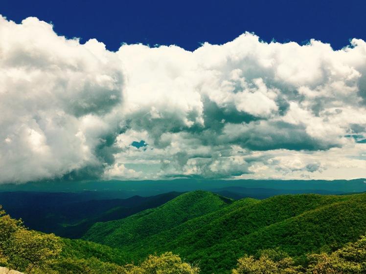 Buck Springs Overlook