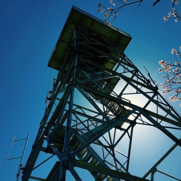 Fryingpan Mountain - lookout tower