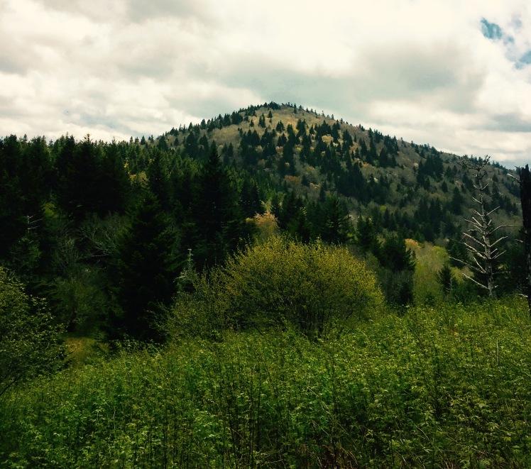 Green Mountain Trail - Mt. Hardy