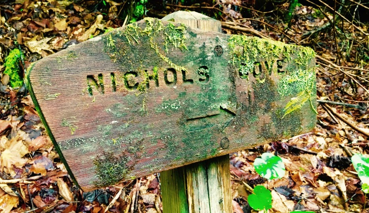 Nichols Cove Trail - trailhead