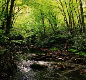 Slickrock Creek Trail - creek crossing