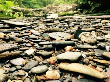 Slickrock Creek Trail - rocks