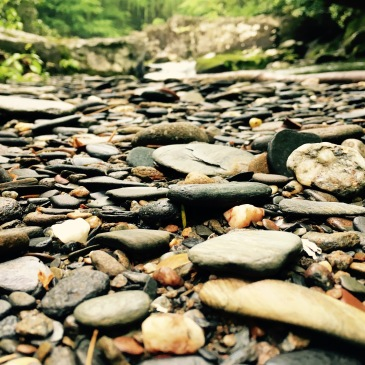 Slickrock Creek Trail - rocks