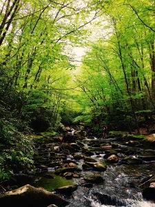Slickrock Creek Trail - Sarah