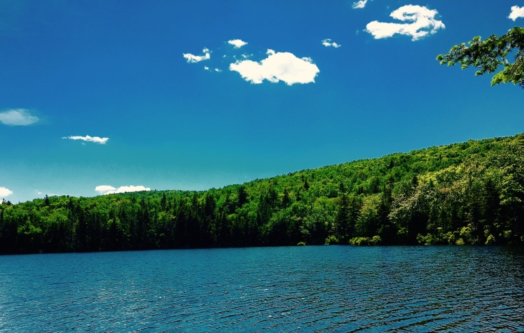 Griffith Lake