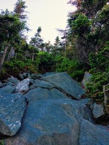 hike up Mt. Abraham