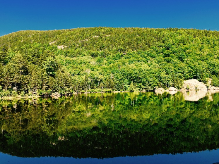 Little Rock Pond