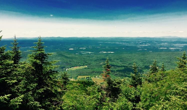 view - Mt. Horrid