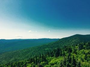 Mt. Roosevelt views